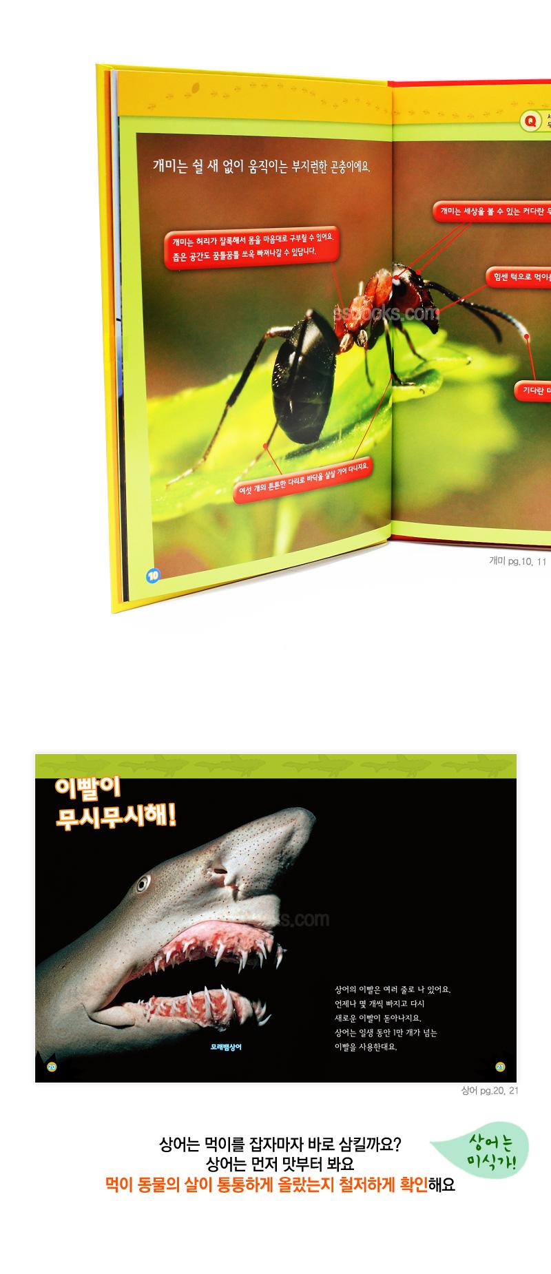삼성출판사 NEW 내셔널 지오그래픽 키즈30권